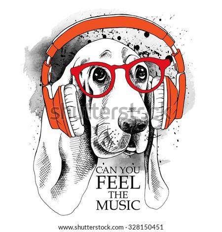 Stock Photo Dog Basset Hound portrait in a red headphones. Vector illustration.