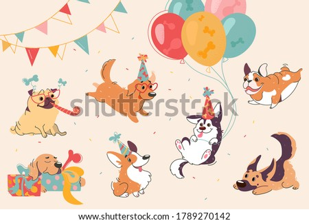 Dog birthday party. Puppies of different breeds at the party, labrador, corgi, shepherd, pug, american bulldog, retriever. The dogs are wearing  cones, sunglasses. Cartoon set for design feast. Vector