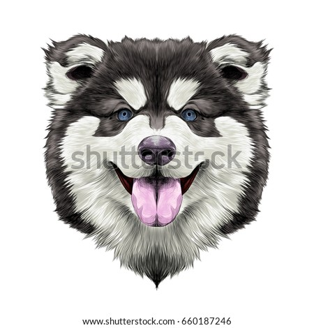dog breed alaskan malamute