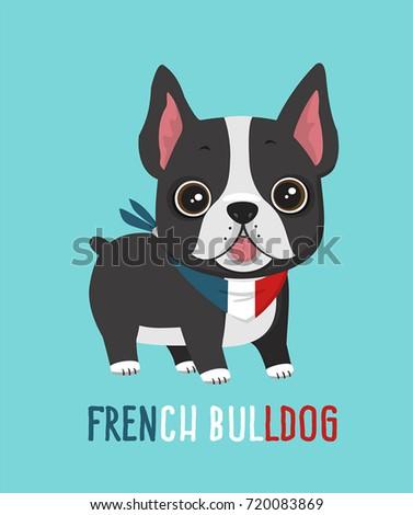 dog breed french bulldog puppy