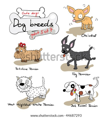 Dog breeds 5 - stock vector