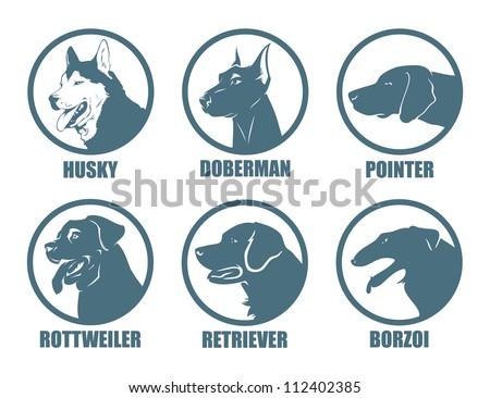 dog breeds labels   vector