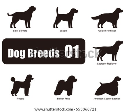 dog breeds  standing on the
