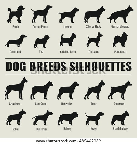 dog breeds vector silhouettes...