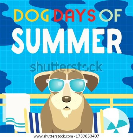 dog days of summer time for