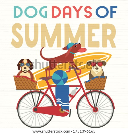 dog days summer time cute