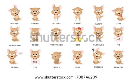 Dog emotions set. Funny cartoon emoji. Smiling and angry, sad and delight dog.