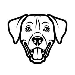 Dog face vector illustration isolated on white background