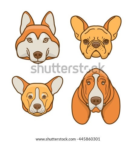 dog faces of various breeds