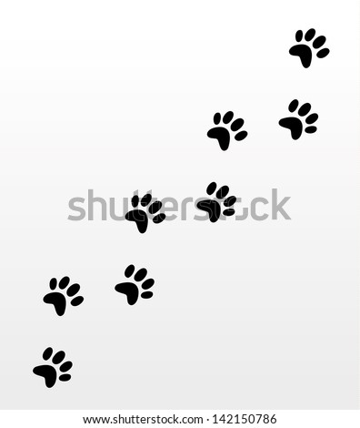 dog footsteps
