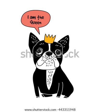 dog french bulldog queen fun