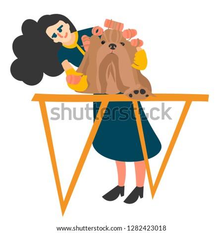 dog grooming, grooming Yorkshire Terrier vector