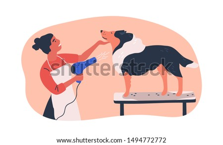Dog grooming service flat vector illustration. Hairdresser holding electric hairdryer equipment cartoon character. Groomer drying domestic animal hair isolated clipart. Pet standing on table in salon.
