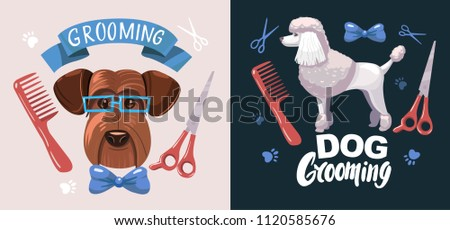 Dog grooming. Set of vector cartoon objects.