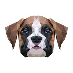 Dog head illustration. Vector image.
