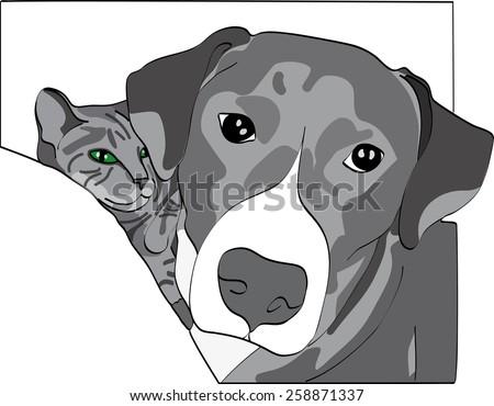 dog illustration   grey cat