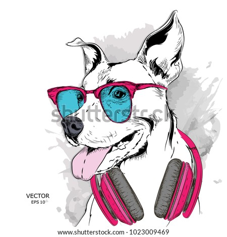 dog in glasses and headphones