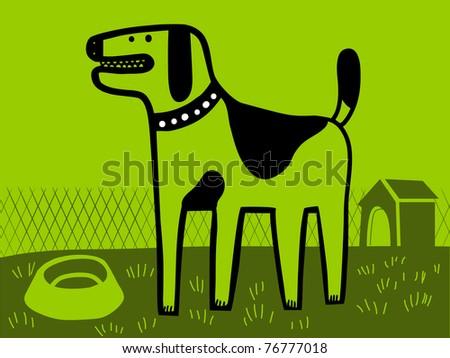 dog in the  green yard