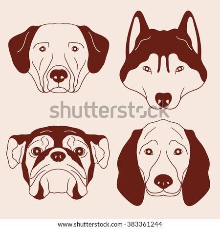 dog muzzle hand drawn vector