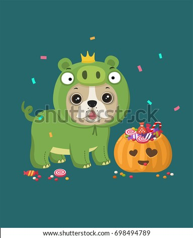Dog of the breed French bulldog. Puppy is dressed in a Halloween  pig's suit. Nearby there is a festive pumpkin with sweets and candy.
