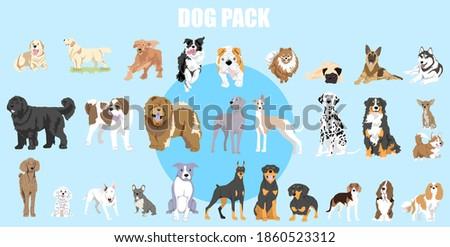dog pack vector web illustration ストックフォト ©