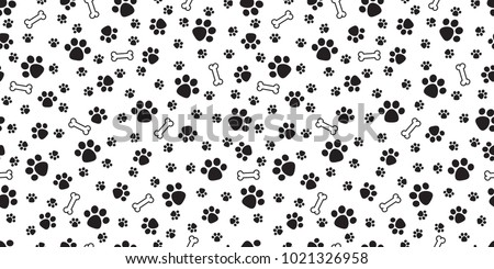 dog paw isolated dog bone