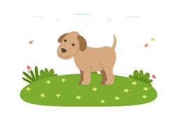 Dog. Pet, domestic and farm animal. Dog is walking on the lawn. Vector illustration in cartoon flat style.