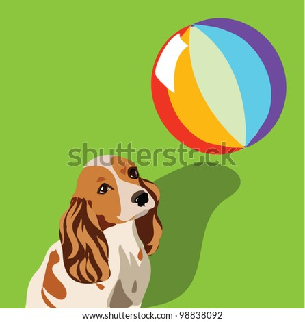 Dog playing with ball on green vector