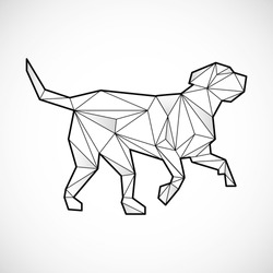 Dog polygonal lines illustration. Abstract vector dog on the white background