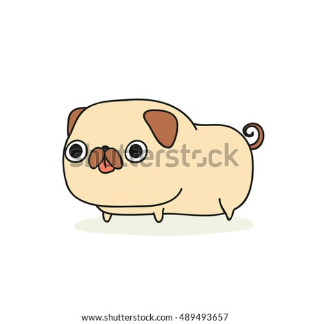 dog  pug breed  isolated of