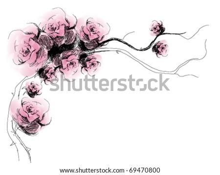 rose flower sketch. vector : Dog-Rose flowers