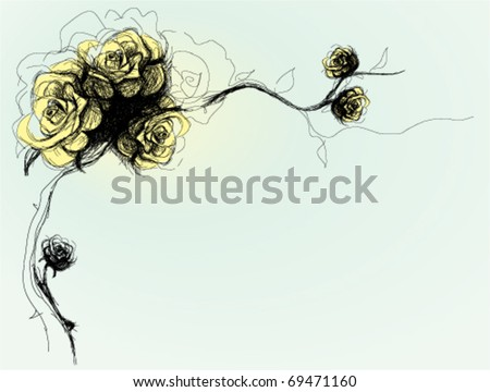 Dog-Rose flowers background / realistic sketch (not auto-traced)