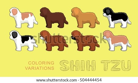 dog shih tzu coloring variations vector illustration - Shih Tzu Coloring Pages