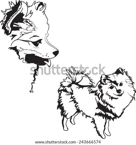 dog sketch illustration