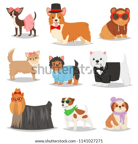 Dog vector puppy pet animal doggie character in canine clothing of domestic dog-breeding illustration doggish set of doggy terrier in dog-collar isolated on white background