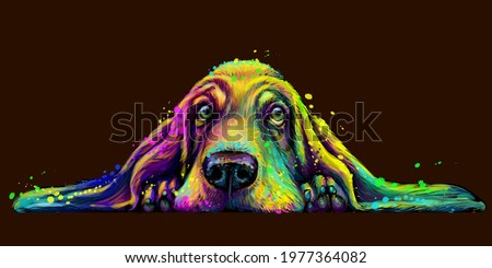 Dog. Wall sticker. Abstract, colorful, neon portrait of a Basset Hound dog on a dark brown background in the style of pop art. Digital vector graphics. Background on a separate layer.