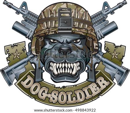 dog wearing military helmet