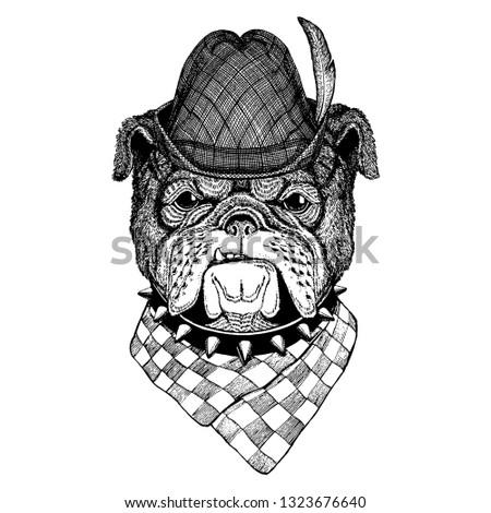 Dog wearing traditional bavarian tirol hat. Oktoberfest.