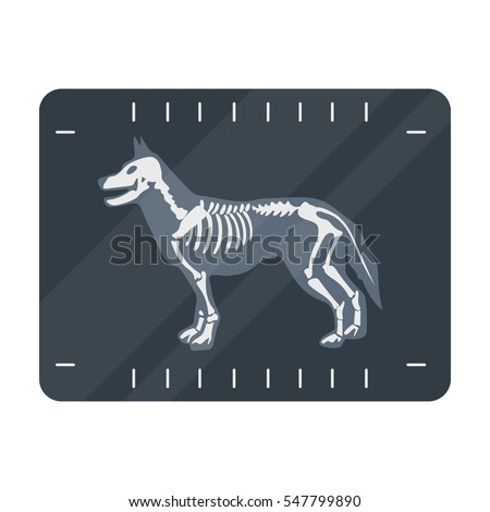dog x ray icon in cartoon style