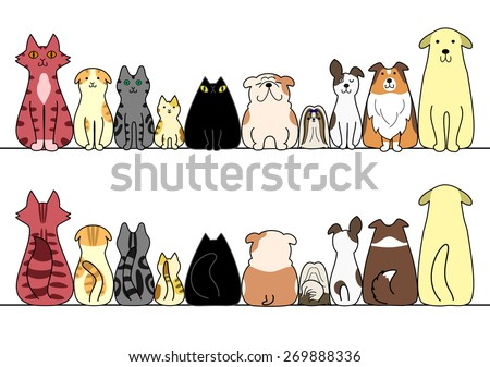 dogs and cats in a row with