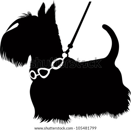 dogs animal a Scottish Terrier a vector it is isolated on a white background