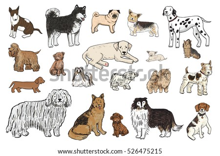 dogs animal vector color set