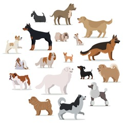 Dogs breed set isolated on white. Collection of big and small puppies. Different types of dogs. Exhibition of popular dog canine species. Pedigreed animals in cartoon style. Vector illustration