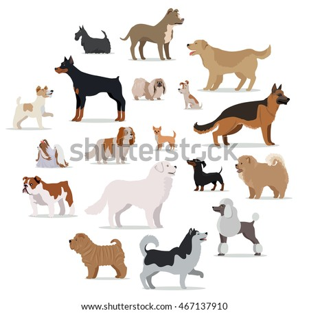 dogs breed set isolated on