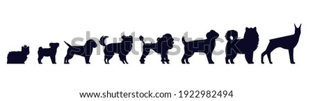 Dogs breed silhouettes. Pedigree puppies as doberman and malamute, Labrador and poodle, shepherd and beagle, pu, terrier isolated vector set. Small and big domestic animals or pets
