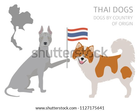 Dogs by country of origin. Thai dog breeds. Infographic template. Vector illustration