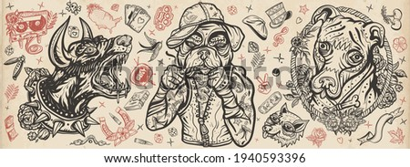 Dogs. Evil doberman, street crime boxer bulldog, honey staffordshire terrier. Canine art. Old school tattoo vector collection. Traditional tattooing style. Cartoon animals character
