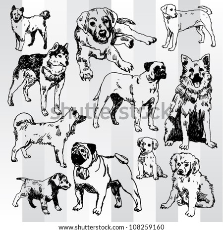 dogs hand drawn