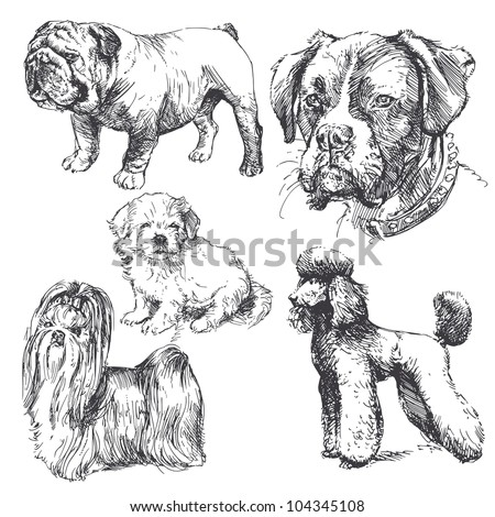 dogs - hand drawn set