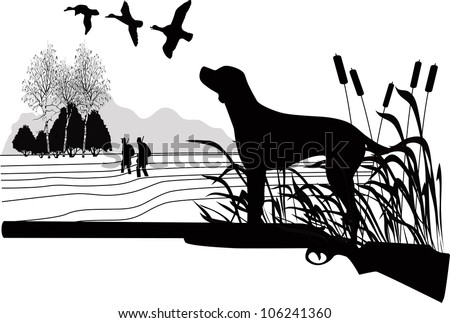 Dogs of a duck  hunt nature a vector the gun on a white background is isolated